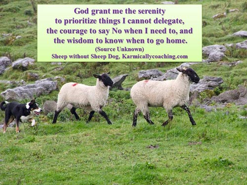 Serenity prayer for sheep style time managers