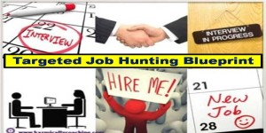 Steps in a targeted job hunting blueprint