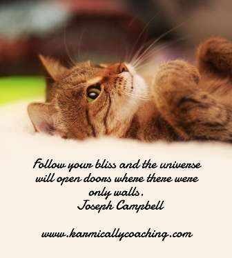 Follow your bliss quote