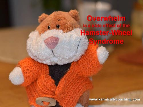 overwhelm is a side effect of hamster wheel syndrome via Karmic Ally Coaching