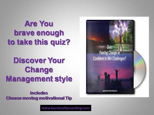 Karmic Ally Coaching Quiz on Change Management