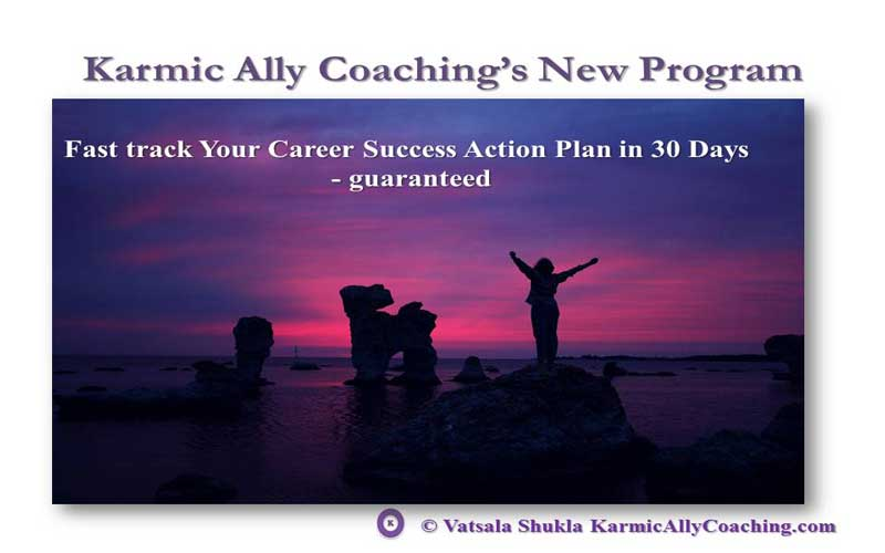 Karmic Ally Coaching's Fast Track Your Career Success Action Plan