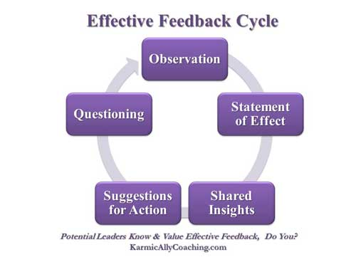Effective Feedback Cycle