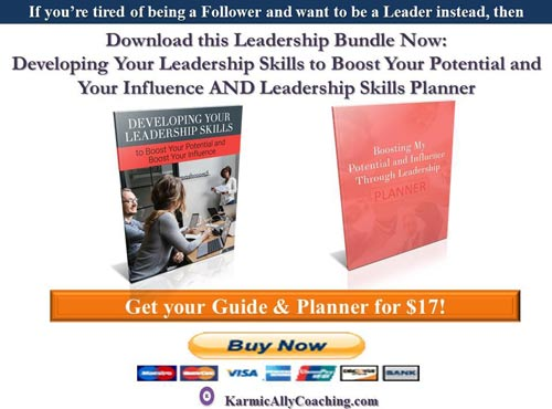 Karmic Ally Coaching's Leadership Development Guide and Planner