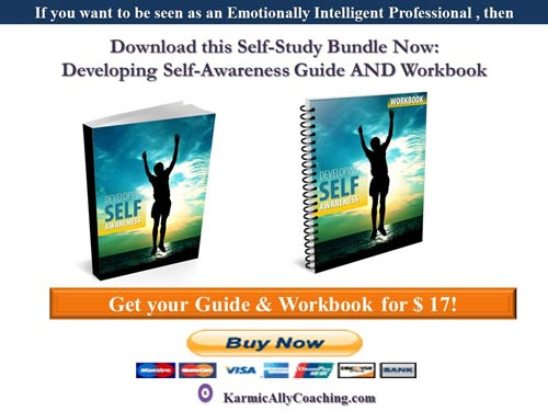 Karmic Ally Coaching Self Awareness ebook and journal bundle