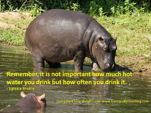 Hippo weight loss tip from Vatsala Shukla