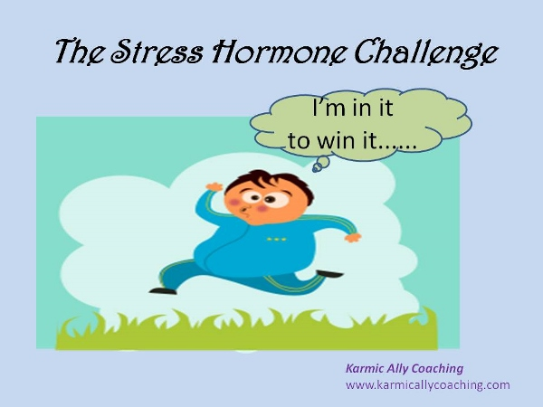 Stress and Belly Fat | Karmic Ally Coaching
