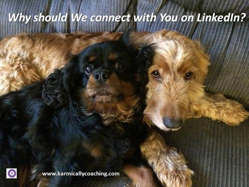 2 ambivalent dogs asking why they should connect with you on LinkedIn
