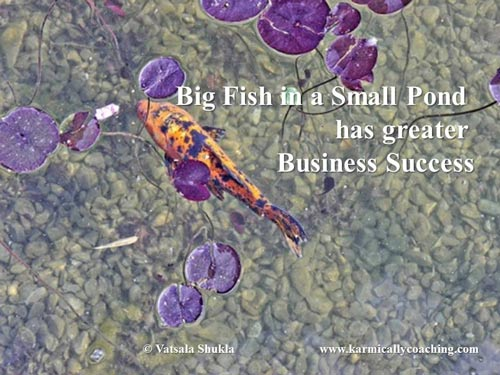 Big Fish in a Small Pond has greater business success
