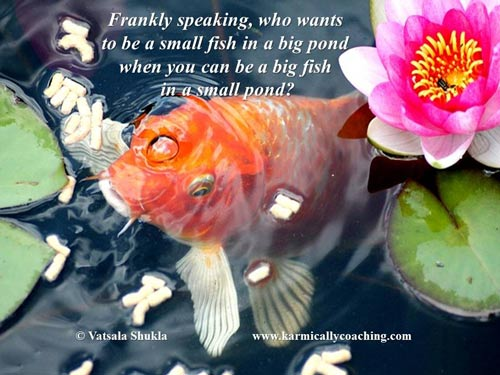 Who wants to be a small fish in a big pond in business?