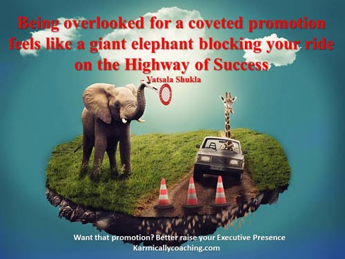 Elephant blocking you on highway of promotion success