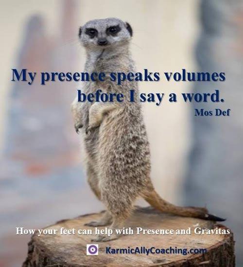 Meerkat standing to demonstrate presence