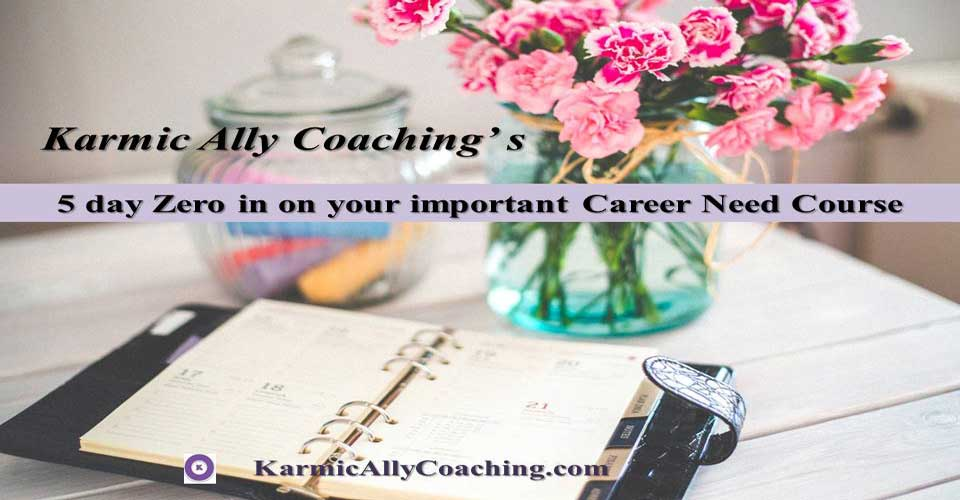 Welcome to Karmic Ally Coaching' Mini Career Course