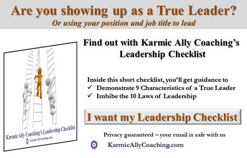 Karmic Ally Coaching Leadership Checklist