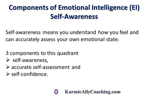 Components of Emotional Intelligence - Self Awareness