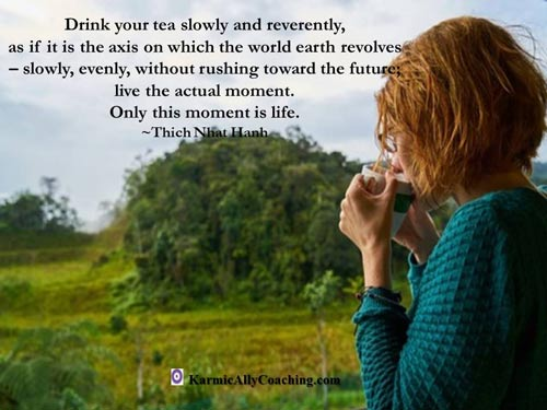 This quote from Thich Nhat Hanh captures the essence of stopping to observe with mindfulness